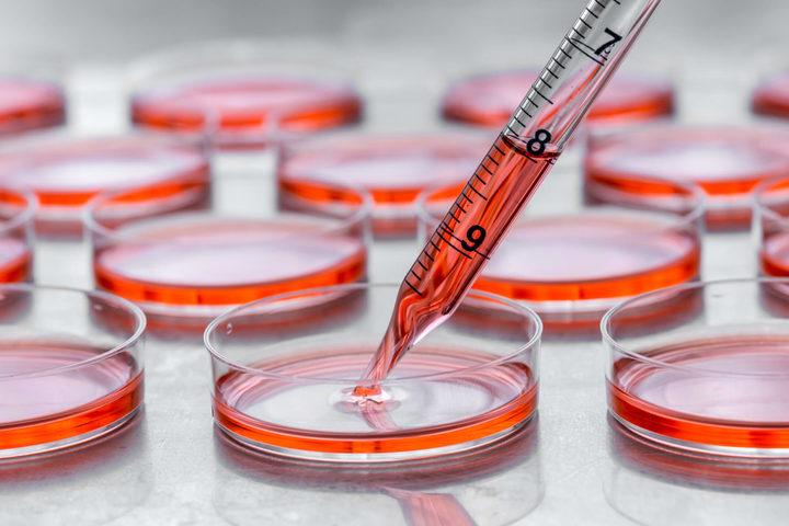 Oncologia: i nuovi paradigmi del monitoraggio personalizzato
