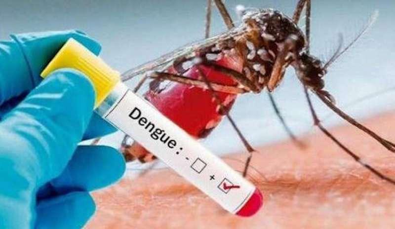 Dengue, vaccino in fase di sperimentazione