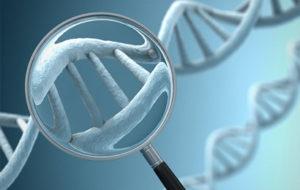 Malattie rare: arriva il Testo unico su patologie e farmaci orfani