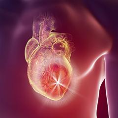 Interventi coronarici ad alto rischio: in arrivo un nuovo dispositivo