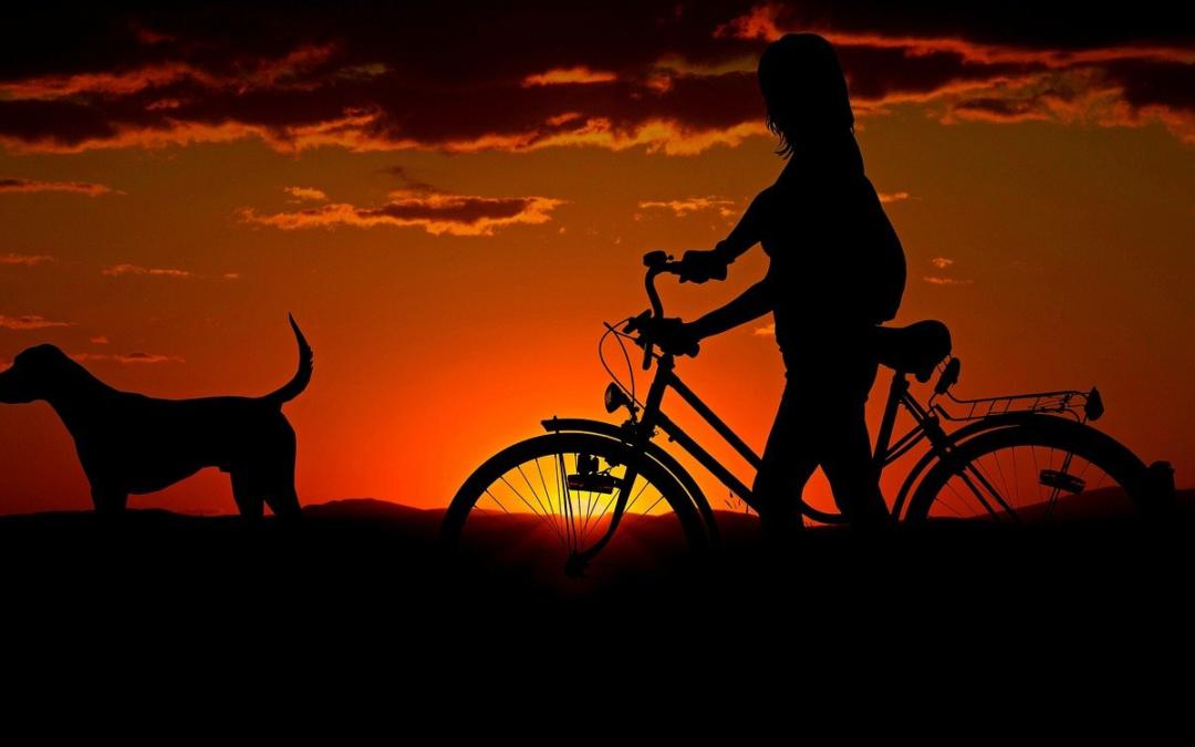 Nasce la prima agenzia di viaggi italiana per le famiglie con cane
