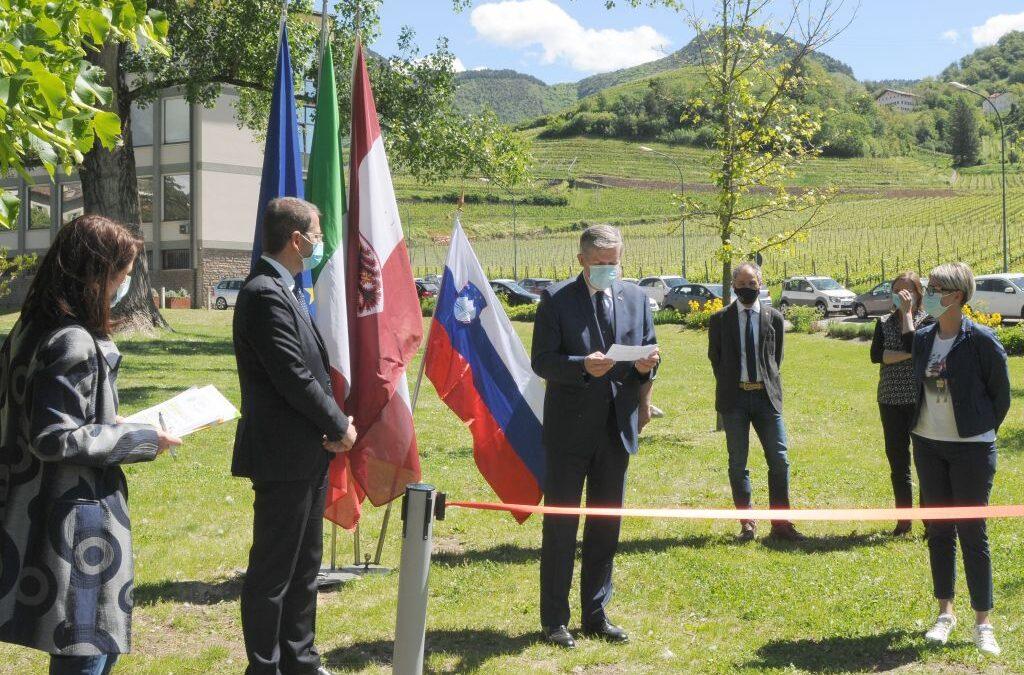 Giornata mondiale delle api: arnie slovene in dono al Trentino