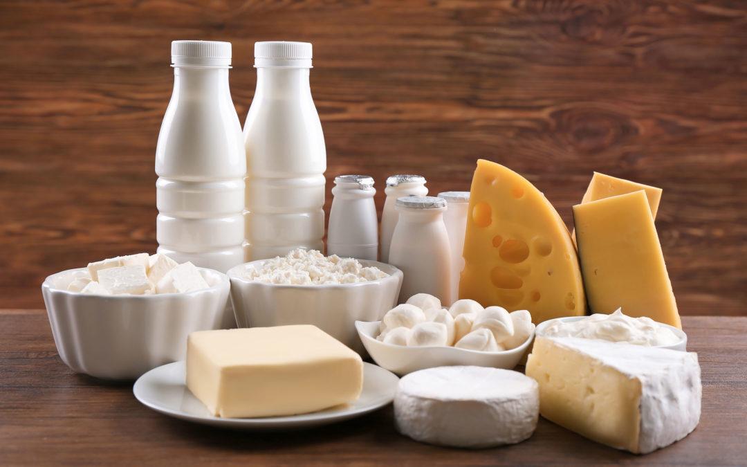 L'odissea del cibo, dal campo alla tavola: alla scoperta del latte e dei formaggi