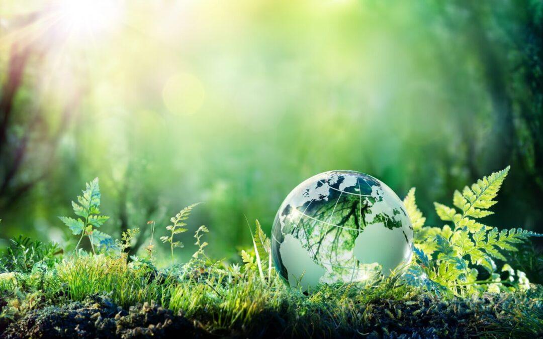 Sustainability Impact Rating: è italiano il primo algoritmo che misura la sostenibilità delle aziende