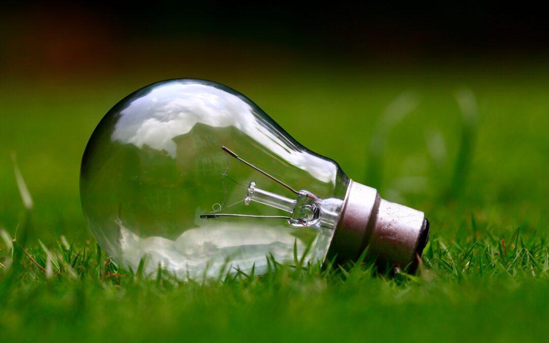 Tariffe luce green, vantaggi non solo per l'ambiente: le offerte costano meno