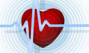 Corcym, la nuova società di medical device per le patologie cardiache si presenta al mercato
