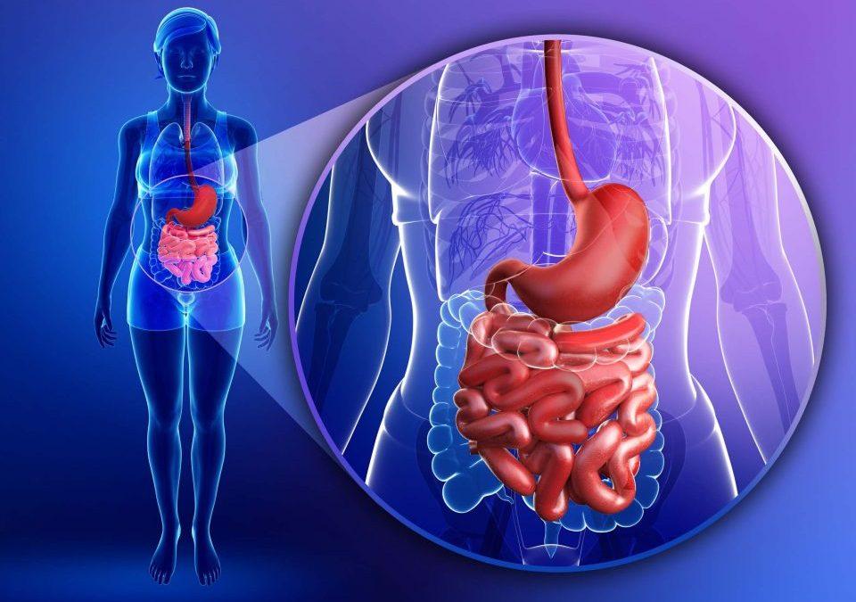 Malattia di Crohn, in Islanda si studia un nuovo biosimilare
